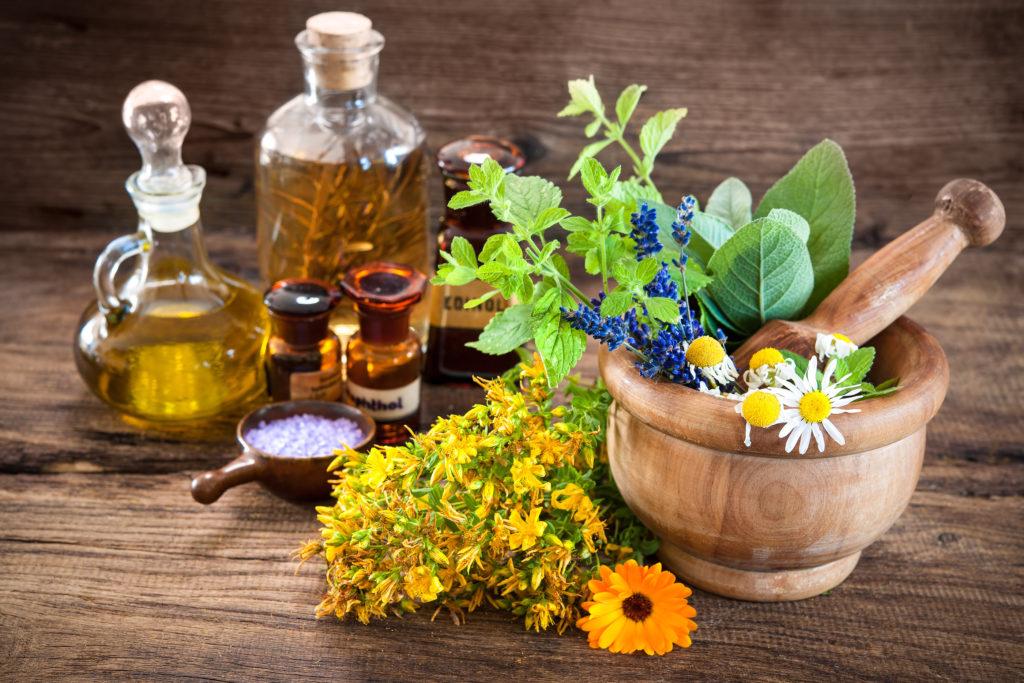 травник лекарственные растения картинки доверяет все