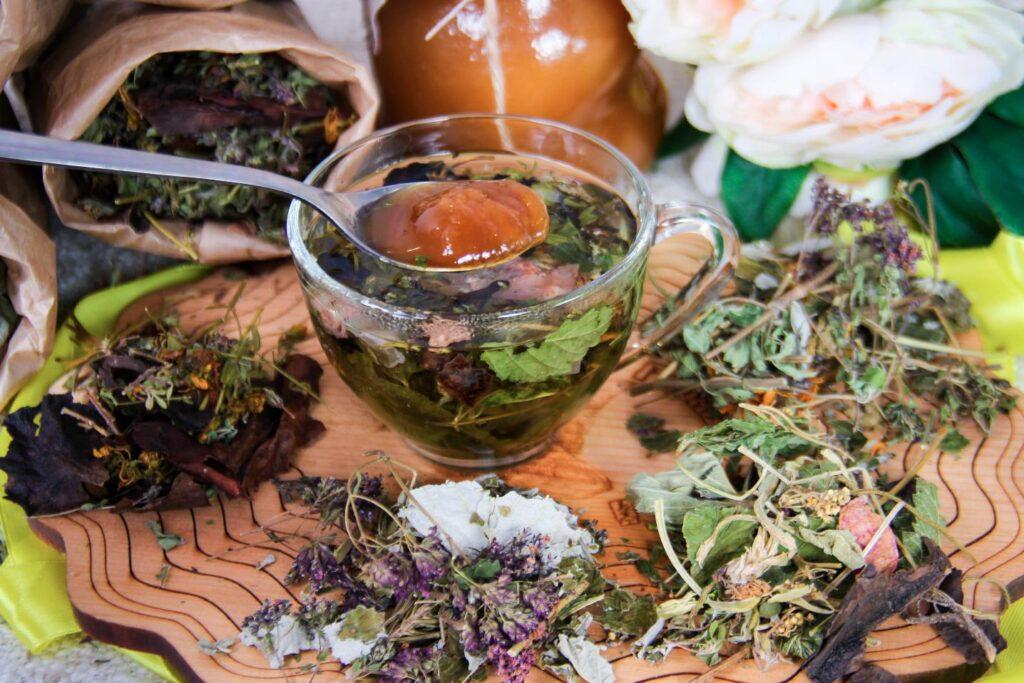 lekarstvenyi travy med narodnaya medicine