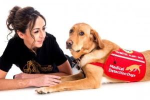 аллергены шерсти домашних животных